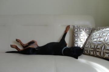Odpoczynek.